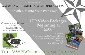 Video your business