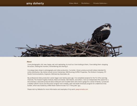 Amy Linn Doherty Photography/Pawpro Media Portfolio