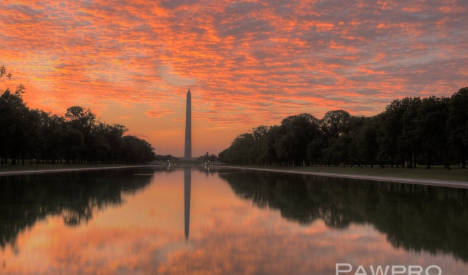 Spectacular Summer Sunrise at the Washington Monument