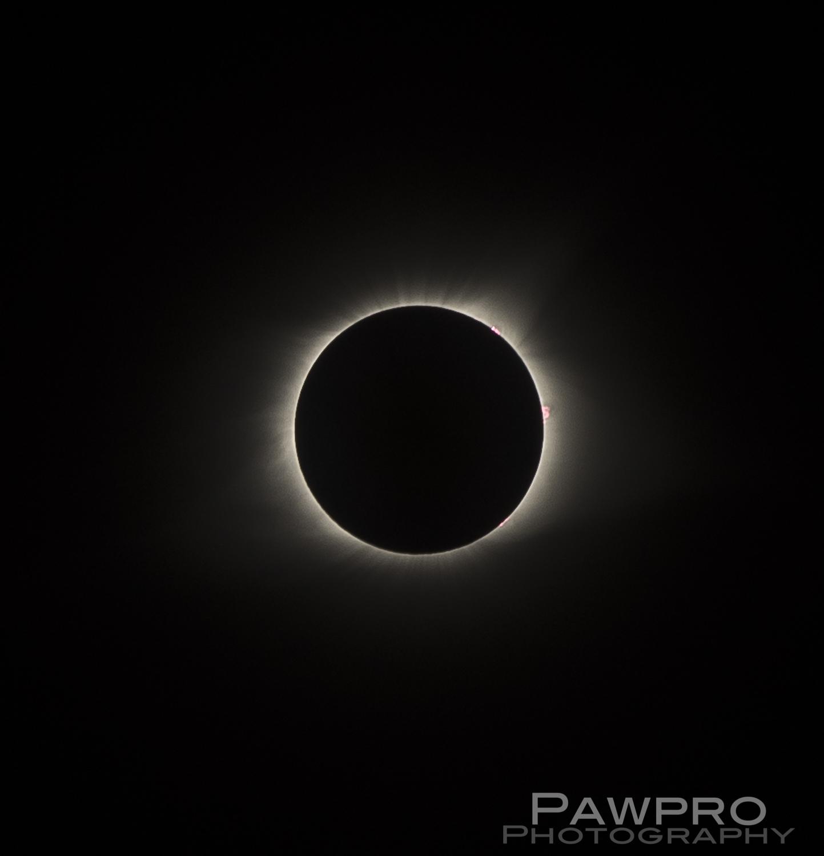 _PAW9128