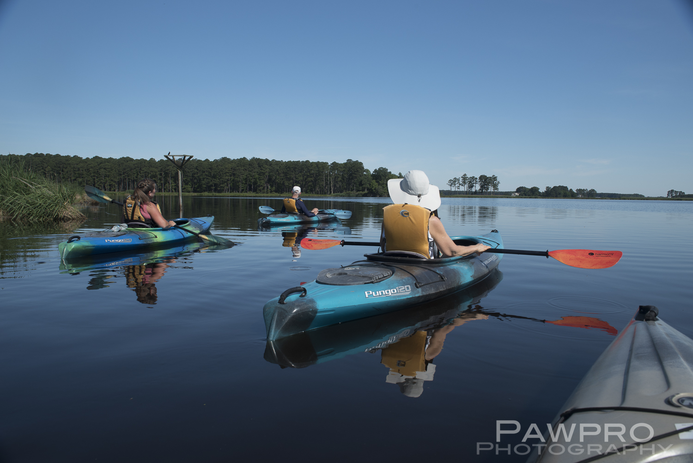 KayakingBlackwaterNWRPAW8049