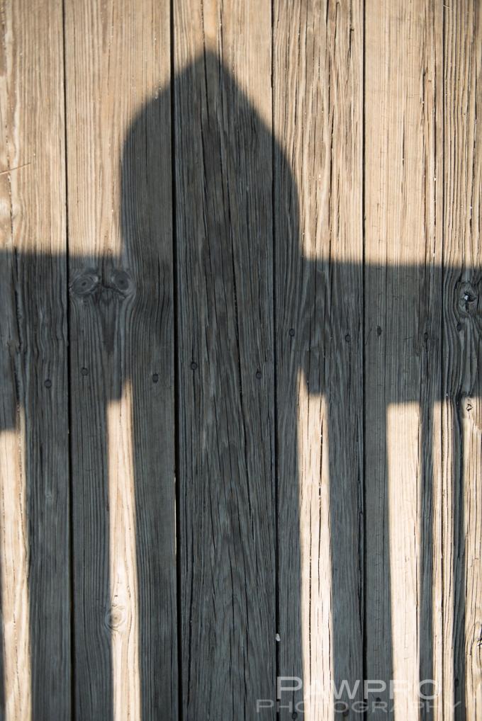 PierShadowPAW7768