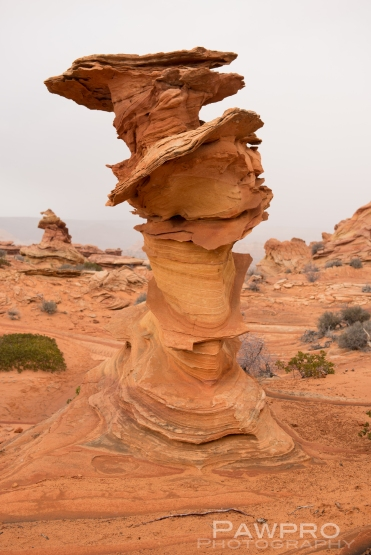 South Coyote Buttes Control Tower