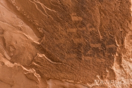 WhitePocketPetroglyphs2