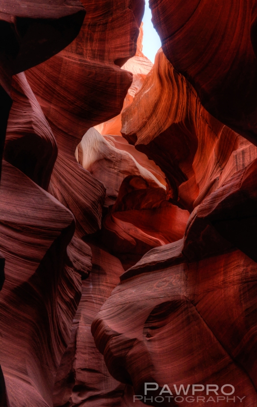 Slot Canyon Amy Linn Doherty Photo PAW8926_27_28_29_30