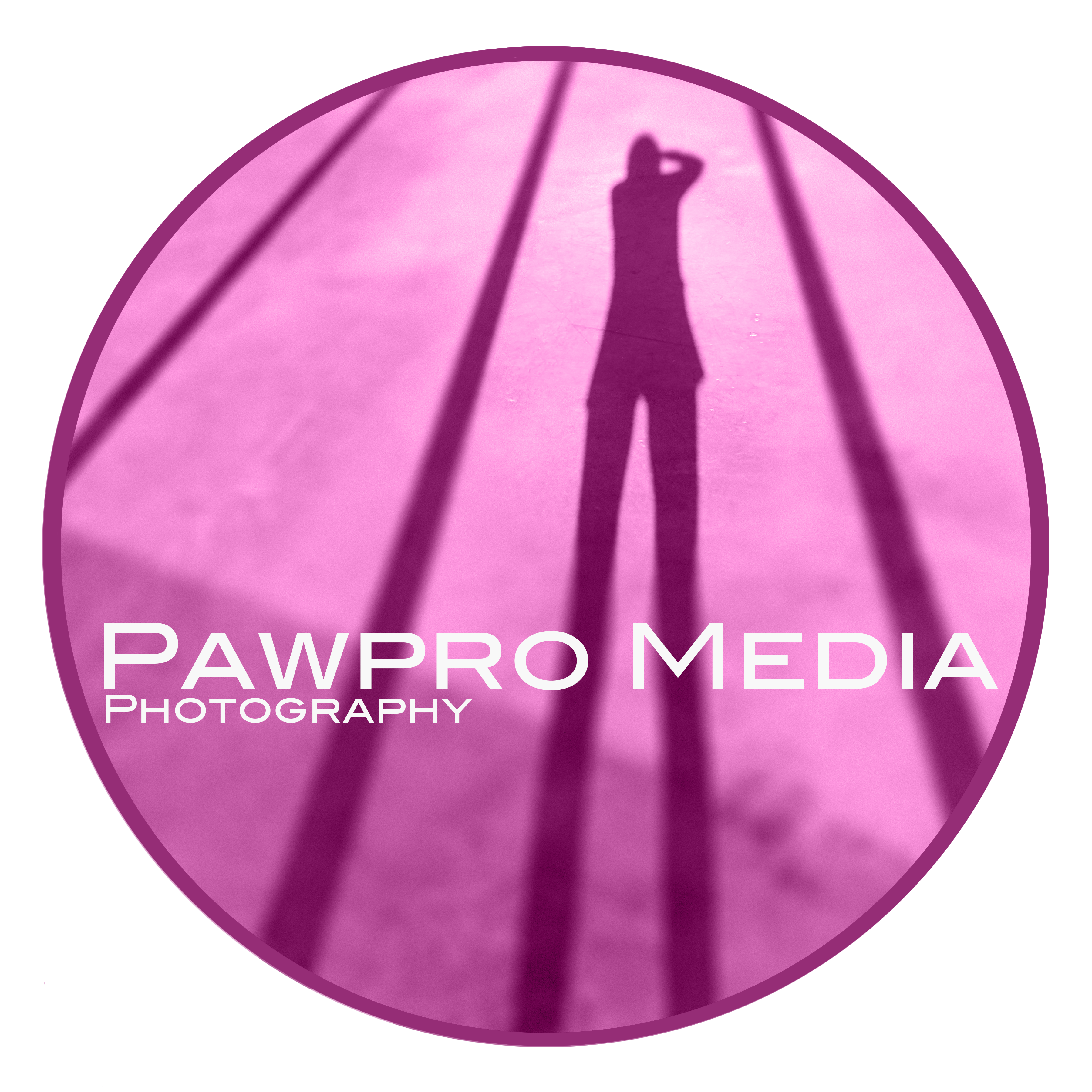 Photography  Washington DC – Pawpro Media